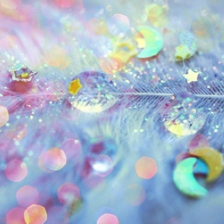 Droplets and glitter on a feather, wonderfully abstract!