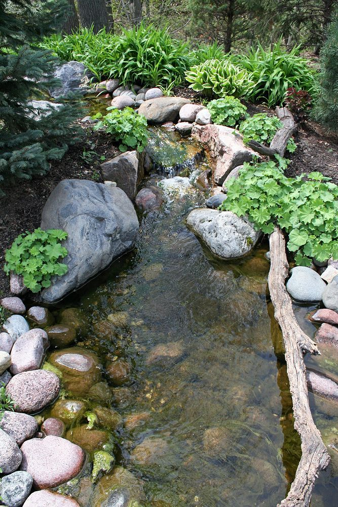 A natural pond setting located on a busy residential for Koi pond setup