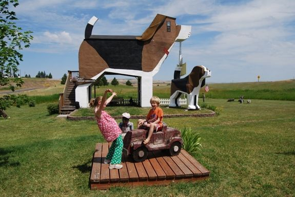 Unusual Bed & Breakfast: Dog Bark Park Inn