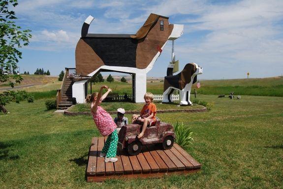 Unusual Bed & Breakfast: Dog Bark Park Inn