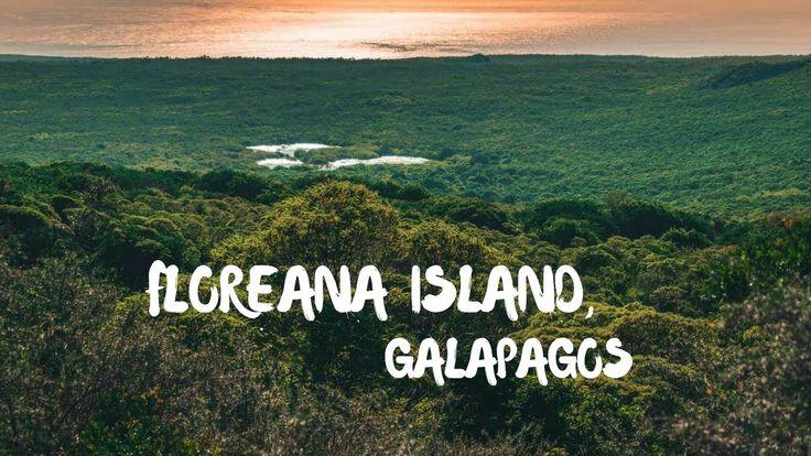 Visiting Floreana Island in the Galapagos, Ecuador