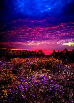 Wow - Once in a Lifetime! por Phil Koch