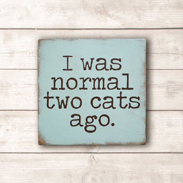 Funny Cat Sign; Cat Wood Sign; Cat Person Sign; Cat Lovers Sign; I Was Normal Two Cats Ago Wood Sign by KokuaDesign on Etsy https://www.etsy.com/ca/listing/504832610/funny-cat-sign-cat-wood-sign-cat-person - What more to say other than we just LOVE cool stuff!