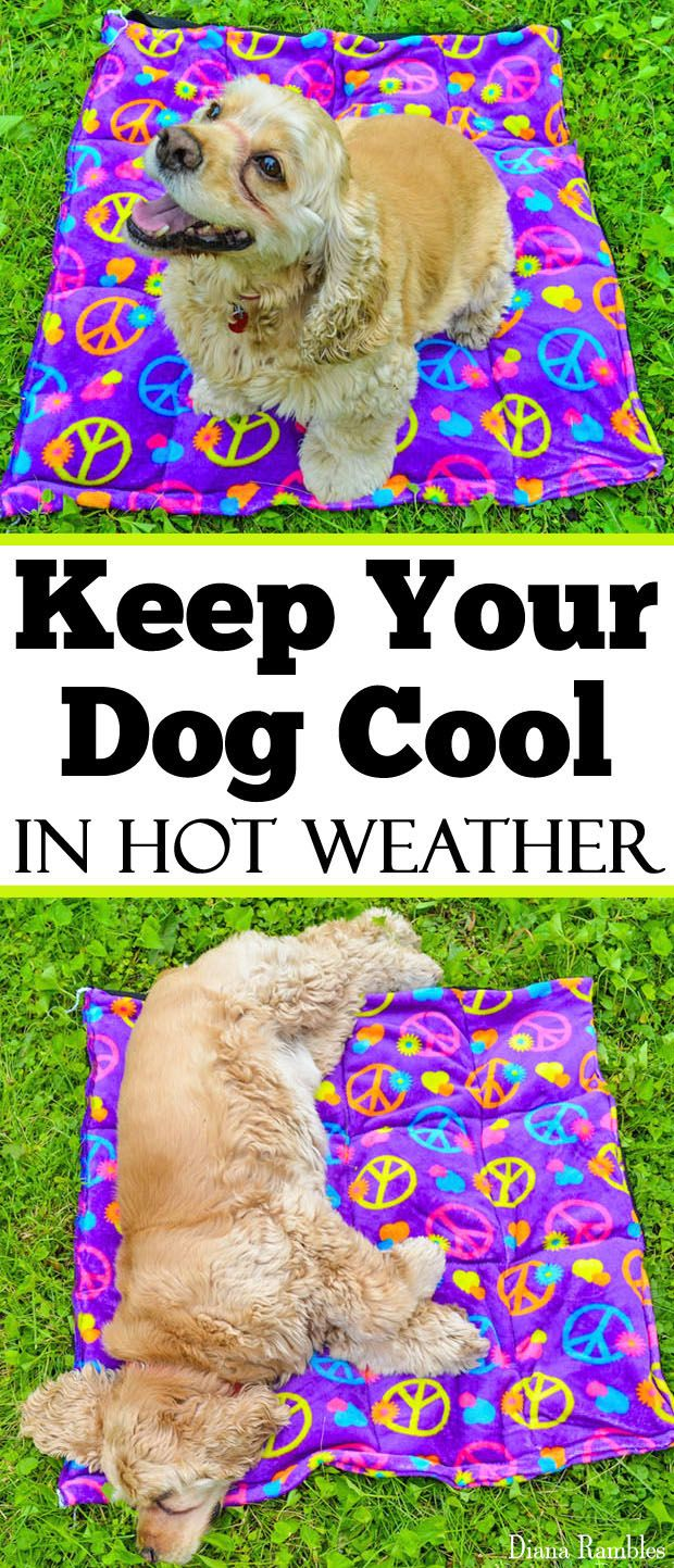 DIY Dog Cooling Pad Sewing Tutorial - Need to keep your dog cooled off this summer? Here is a DIY Dog Cooling Mat Tutorial that will keep your pooch cool while he's outside with the family. It's great pet bed for warm weather climates. It's easy to make and only requires basic sewing skills. AD #dog #DIY