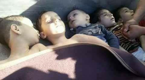 """6 korban Sarin akhirnya meninggal  Anak-anak syahid akibat gas kimia Sarin di Khan Syeikhun (4/4)  Korban tewas gas Sarin di Khan Syeikhun bertambah enam orang lagi kata Menteri Kesehatan Turki Recep Akdag Jum'at (14/4). Mereka berasal dari puluhan korban yang dilarikan ke rumah sakit Turki untuk perawatan lebih baik. Akdag mengatakan total 34 orang dirawat di Turki pasca serangan rezim Assad di Khan Syeikhun. """"Dua puluh lima dari 34 korban dipulangkan dari rumah sakit. Pengobatan tiga orang…"""