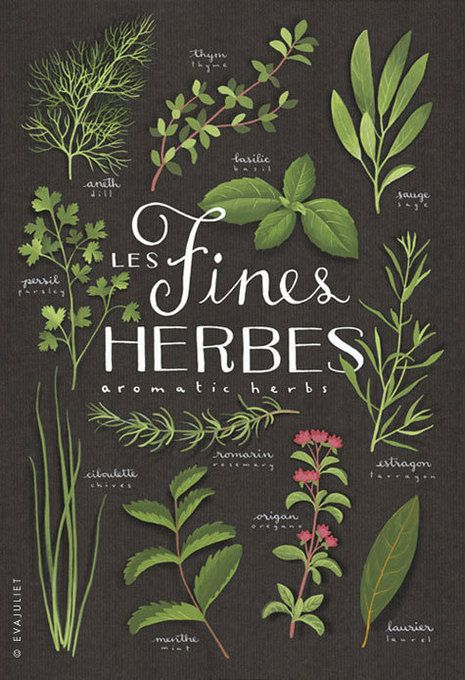 Fines Herbes Print by evajuliet. This would be lovely in a kitchen.