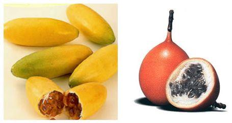 Las frutas tropicales que aparecen en nuestro mercado cada vez son más, su consumo también aumenta, pero todavía hay confusión con los nombres de algunas de ellas, por ejemplo, con los frutos que ofrece la Passiflora Edulis, una planta trepadora cuya flor, en forma de corona de espinas, hizo que los colonizadores españoles la denominaran flor de la pasión. También de ahí surge uno de los nombres de su fruto, la fruta de la pasión. Fruta de la pasión, maracuyá, granadilla púrpura, pasionaria…