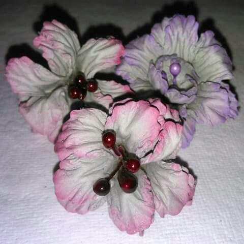 Liliowce
