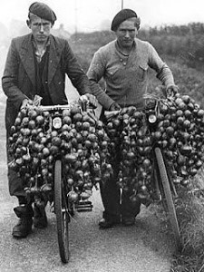 Photo de Johnnies d'oignon sur le site Bretagne France