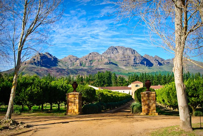 stellenbosch waterford winery south africa wine travel