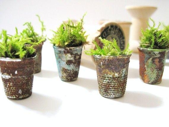 tiny little thimble gardens--thimbles? Wow...teeny tiny little gardens.