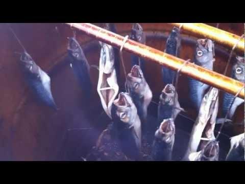 wędzarnia - wędzenie ryb super filmik !!!