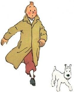 Tintin comics!