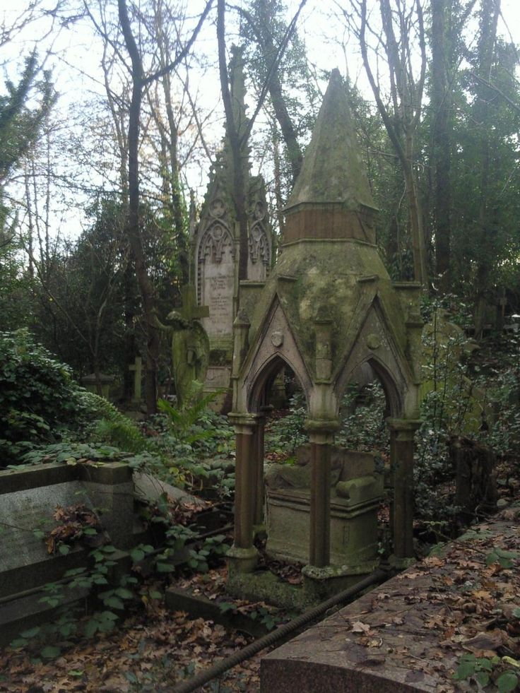 Tombs in Highgate Cemetery in London.  The cemetery is very big and some of it is overgrown. It's very atmospheric