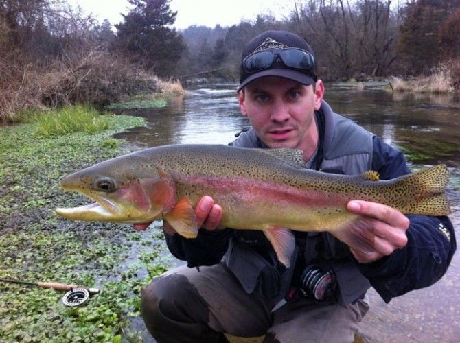 17 best images about fishing on pinterest big fish for Best trout fishing in pa