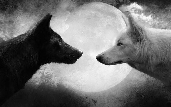 Un viejo indio decía a su nieto: 'Me siento como si tuviera dos lobos peleando en mi corazón. Uno de los dos es un lobo enojado, violento y vengador. El otro está lleno de amor y compasión.' El nieto preguntó: 'Abuelo, dime ¿cuál de los dos ganará la pelea en tu corazón?' El abuelo contestó: 'Aquel que yo alimente'.