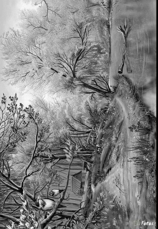 301 best Coloring: Greyscale / Scenery images on Pinterest ...