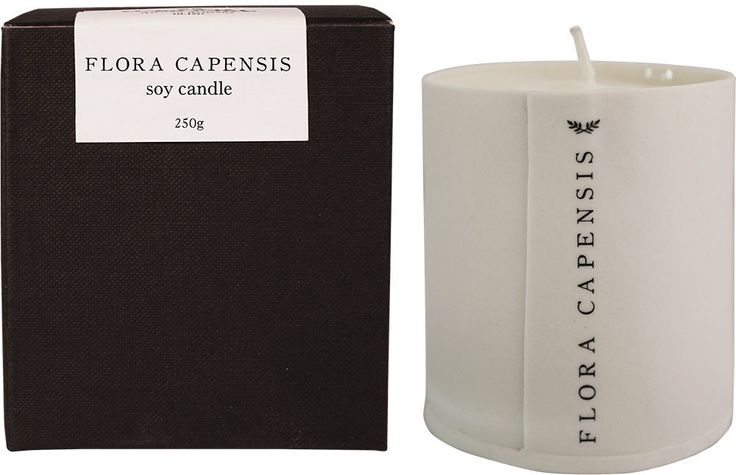 Lisa Firer Candle Flora Capensis #wildolive #fragrance #candle #southafrica #capetown #porcelain #monochrome