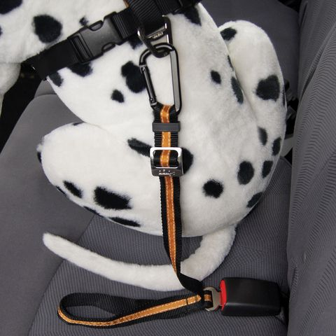 Direct to seat belt tether is a seat belt for dogs that secures your pet, keeping him safe and out of the front seat.