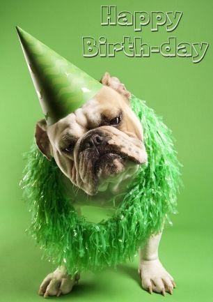 Verjaardag, van harte gefeliciteerd (Copyright www.ellisboogerds.nl©)