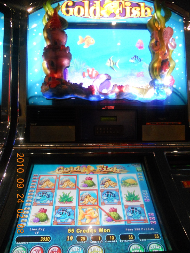 Goldfish Slot machine! My favorite. I can lose all my money on this machine, 1 cent at a time.