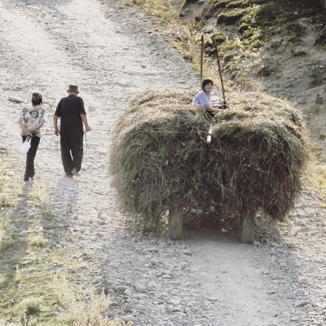Viața la țară #countryside #romania