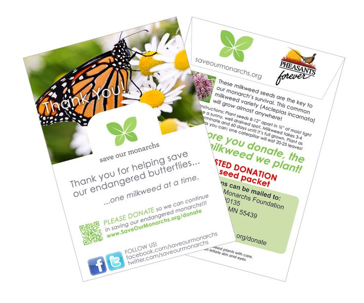 Thank you for your interest in saving the monarch butterfly! We offer seeds inpackets or inbulk.Each seed packet contains 25-30 Asclepias incarnata milkweed seeds with instructions for planting.Please also considermaking a donationto help us purchase more milkweed.Note: You can also receive seeds by sending us a self-addressed stamped envelope to:Save Our MonarchsP.O. Box 390135Minneapolis, MN 55439The butterflies thank you!
