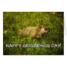 Looking for that perfect Groundhog Day greeting card for the one you love? Well here's one - Happy Groundhog Day! greeting card #groundhogday #groundhogdayhumor #holiday #groundhogdaygifts #groundhogdaypresents #groundhogdaygreetingcards #greetingcard