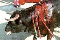 Corridas de toros, el arte del engaño