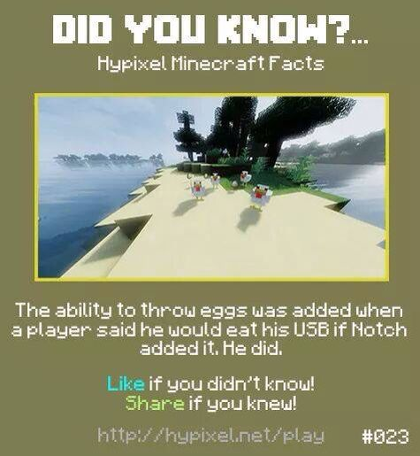Minecraft did you know! #023