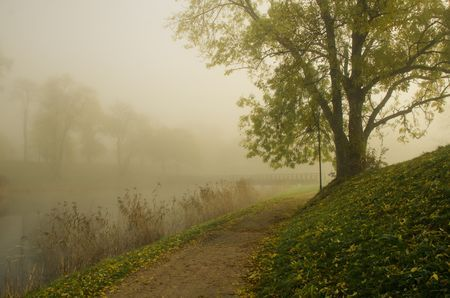 Misty morning Photo by Liz Andersen — National Geographic Your Shot