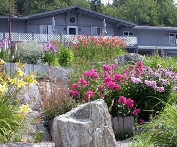 Flowering Perennials and beds