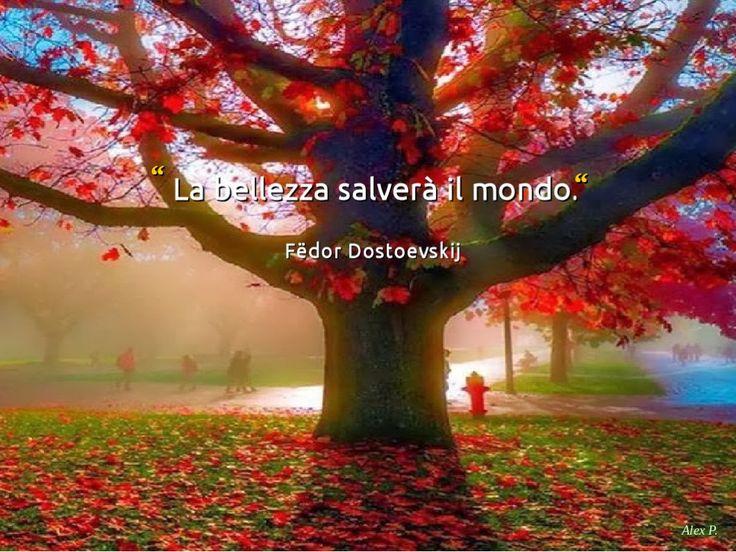 La Bellezza salverà il Mondo.   F. Dostoevskij
