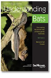 Understanding Bats Learn how these gentle mammals benefit us and about their secret lives. Researchers Kim Williams and Rob Mies dispel common myths, answer frequently asked questions, profile North America's six most regularly seen bat species, and provide information about bat conservation.  Each 32-page guide in the Backyard Booklet Series is packed with practical, easy-to-understand information, color photographs, and useful tips.