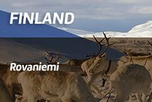 Awesome trip to Finnish Lapland designed by locals! Travel just with a guidebook, meet fun locals and experience the real Lappish way of life.