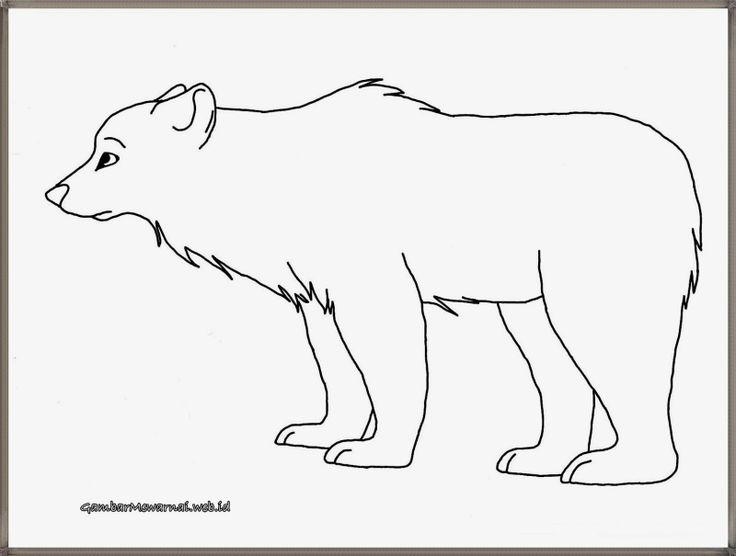 mewarnai gambar beruang kutub