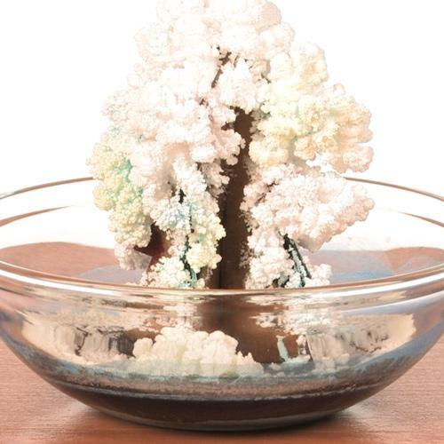 Magic Crystal Tree - Steve Spangler Science