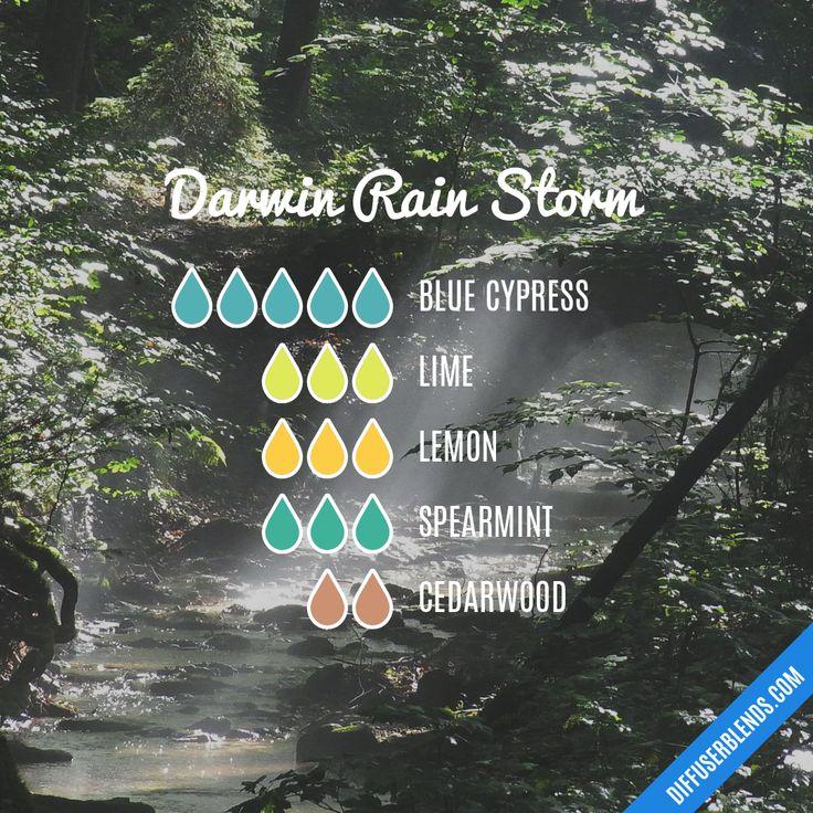 Blend Recipe: 5 drops Blue Cypress, 3 drops Lime, 3 drops Lemon, 3 drops Spearmint, 2 drops Cedarwood