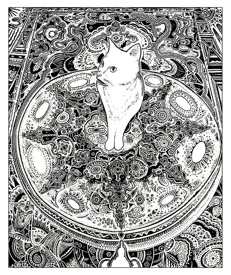 Galerie de coloriages gratuits coloriage adulte animaux - Chat a colorier ...