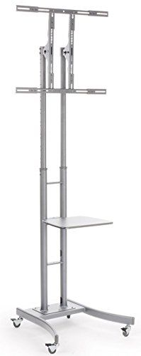 Portable TV Stand with Wheels for LCD, Plasma or LED TVs Between 32 and 84 inches, Height-Adjustable, Steel (Silver) Displays2go