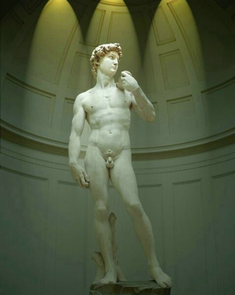 Michaelangelo's David,  Accademia Gallery, Florence - Italy.  I couldn't take my eyes off it...a Masterpiece of Art!