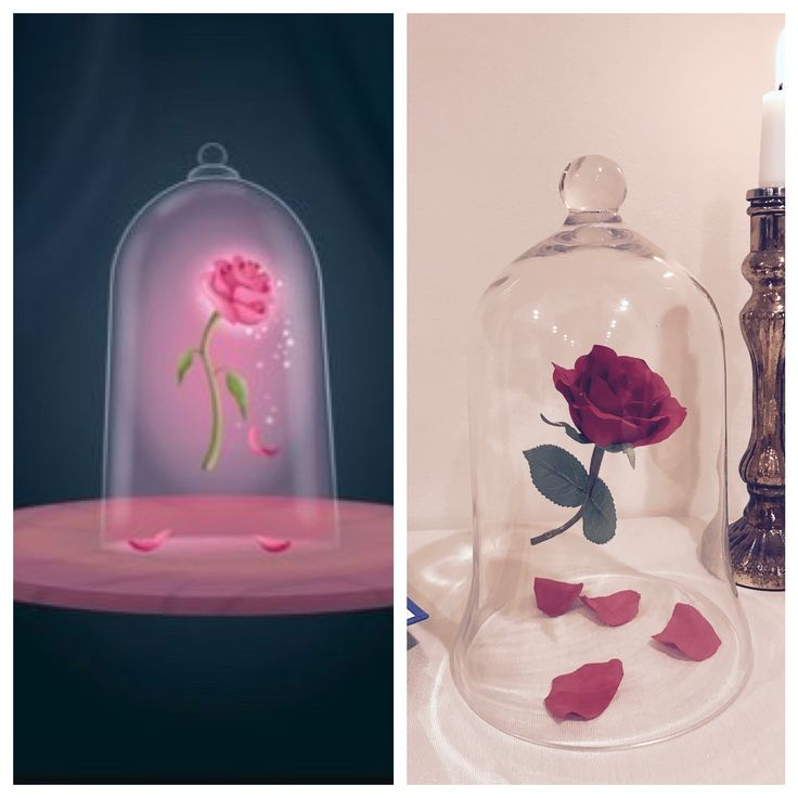 Best beauty and the beast images on pinterest