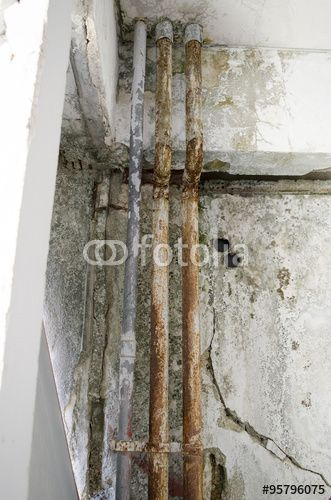 old pipe fungal mold wall