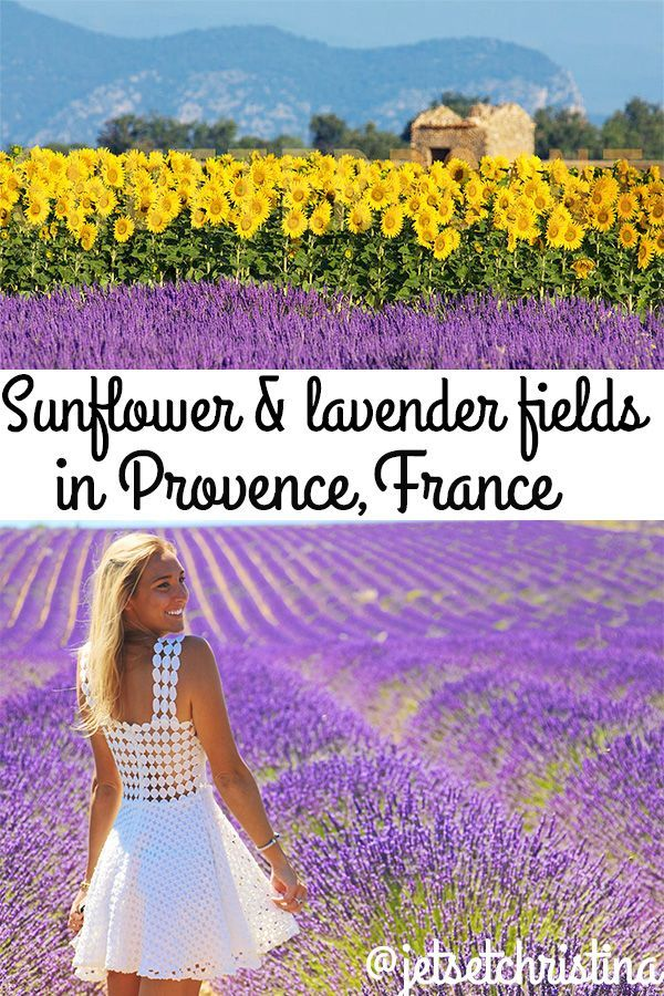 The Lavender Fields Of Provence France Jetsetchristina Lavender Fields Photography Lavender Fields France