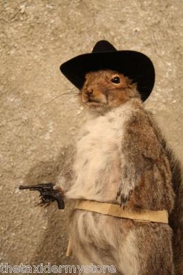 cowboy.squirrel.on.ebay.