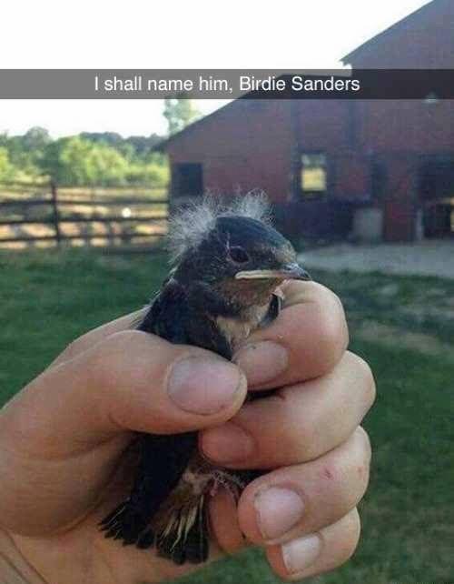 """""""Birdie"""" Sanders"""