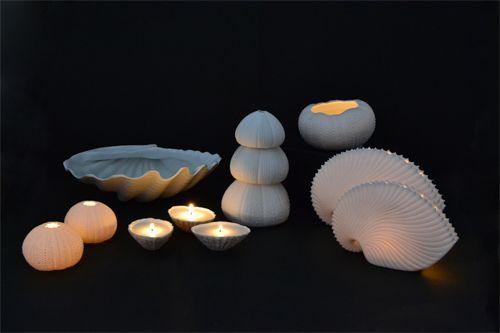 #lunac #porcelain #lunadelmar #sea #shells #urchin #rafiki #candle #patella #clam