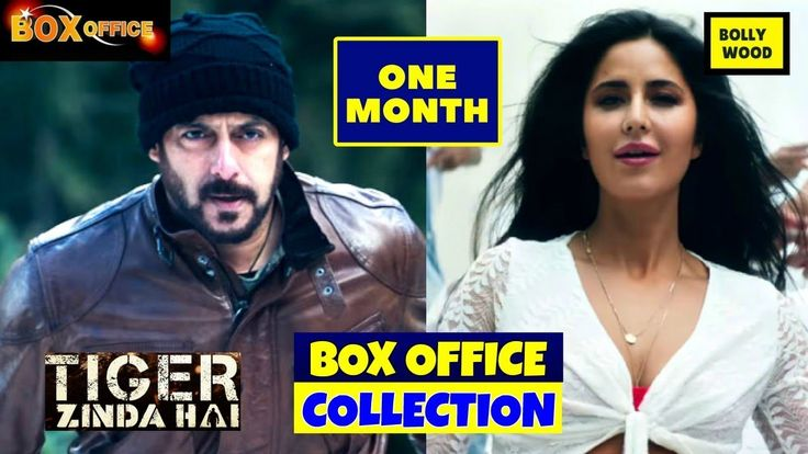 Salman Khan Tiger Zinda Hai 1 Month Box Office Collection