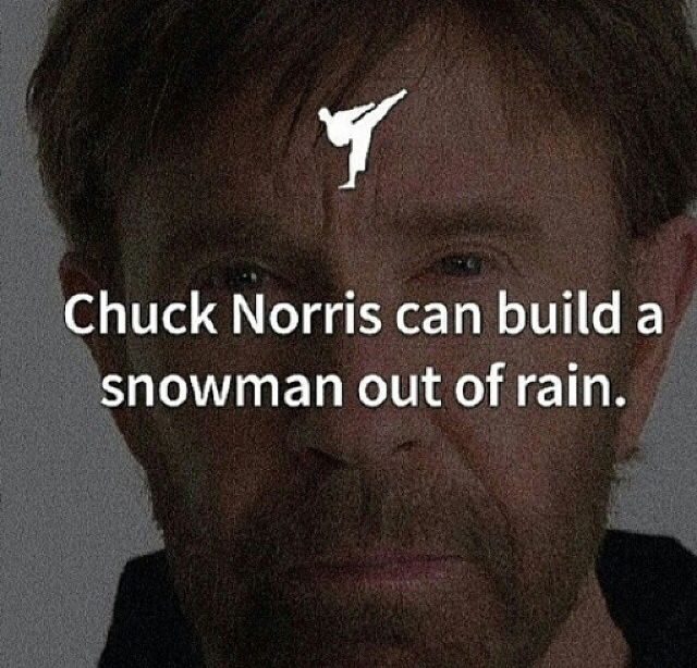 Chuck Norris - Builds snowmen out of rain. www.Facebook.com/McDojoLife