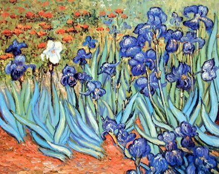 This beautiful poster will add a pleasant pattern to any wall in your home and will surely give a warm touch to your interiors. This poster captures the image of very famous painter Vincent Van Gogh painting of Irises Flower which is sure to grab lot of attention. It would definitely compliment you for your excellent taste. Grab this wonderful piece of art for its durable quality with amazing color accuracy.